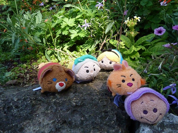 Peluches Tsum-Tsum - Page 8 Petit_96020