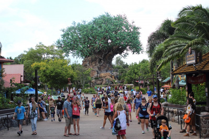 WDW, Universal and more, le retour! - Page 7 Petit_112540