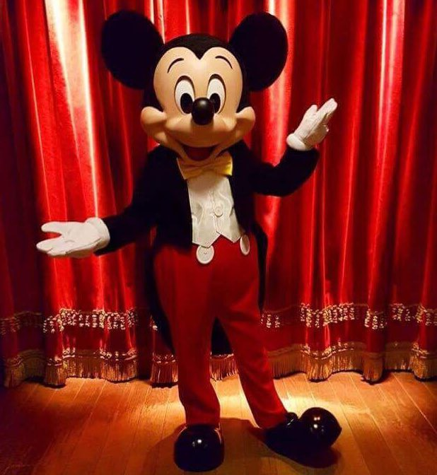MEET MICKEY MOUSE - Fantasyland - Pagina 6 114612